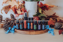 Load image into Gallery viewer, Seasonal Essentials Wellness Box Collection