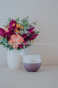 The Floral Wonderland AUS and US Home Essential Collection