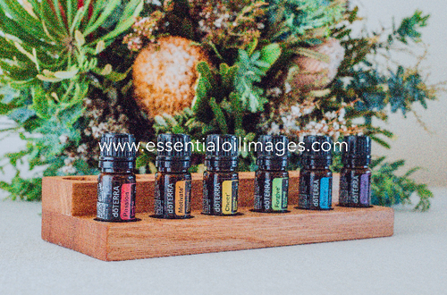 The Floral Wonderland Emotional Aromatherapy Collection