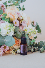Load image into Gallery viewer, The Floral Wonderland AUS and US AromaTouch Kit Collection