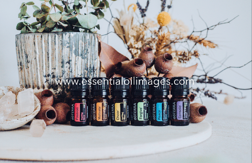 Emotional Aromatherapy Gumnut Collection