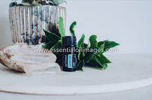 Load image into Gallery viewer, dõTERRA Laurel Leaf 5ml Collection