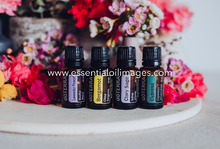 Load image into Gallery viewer, Spring dōTERRA Blends