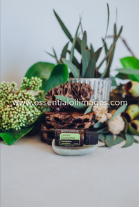 Lemon Eucalyptus - dōTERRA 2019 Together