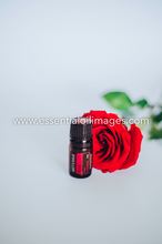 Load image into Gallery viewer, Entire Minimalistic Collection - All Images + Group images - dōTERRA 2019 Together