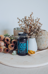 dōTERRA DDR Prime and Copaiba Collection