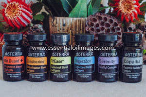 The Banksia SoftGel Collection