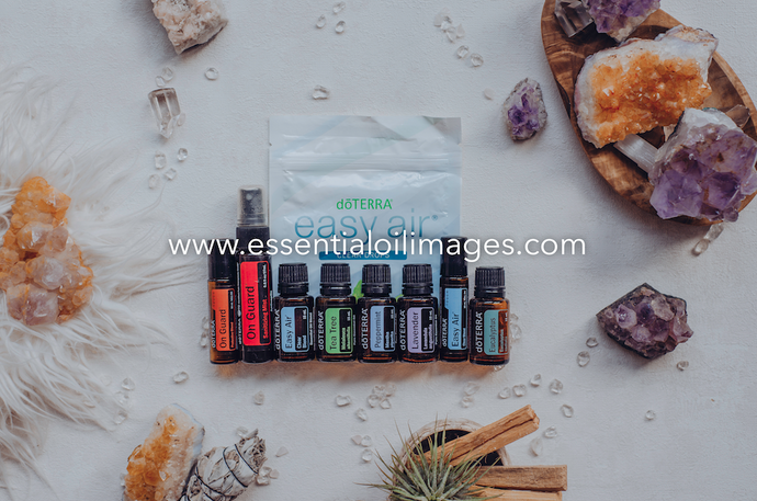 The Enlightenment Seasonal Essentials Wellness Box Collection