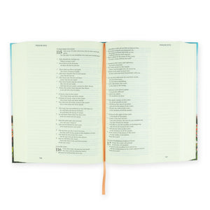 LARGE PRINT ESV JOURNALING BIBLE: ALBION THEME Hosanna Revival