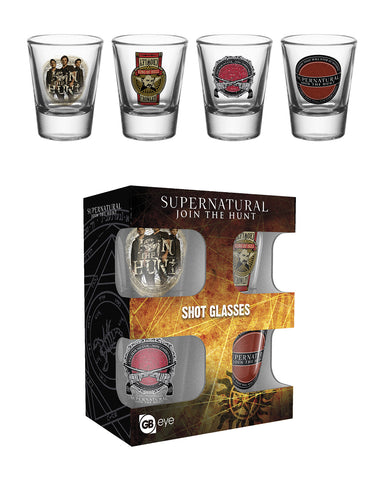 SALE Supernatural shot glasses