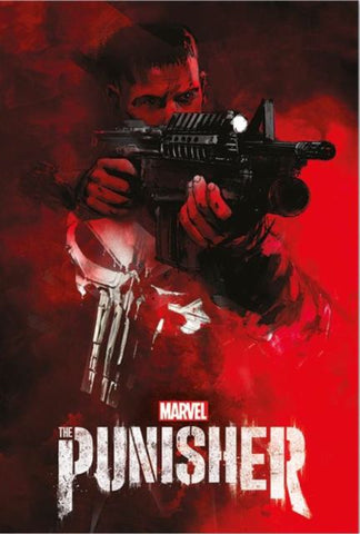 The Punisher aim maxi poster