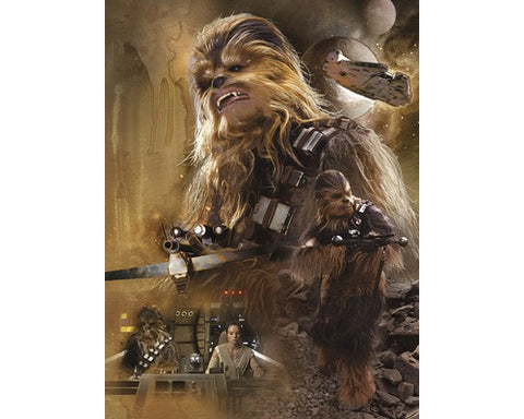 Episode vii chewbacca canvas
