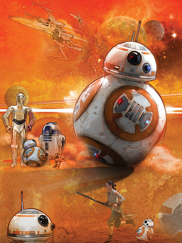 BB8 Art canvas