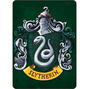 Harry Potter Slytherin magnet