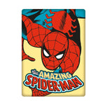 Spiderman magnet