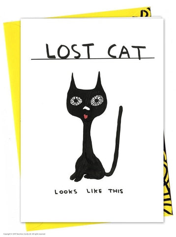Shrigley lost cat card