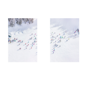 Deer Valley Diptych/Gray Malin