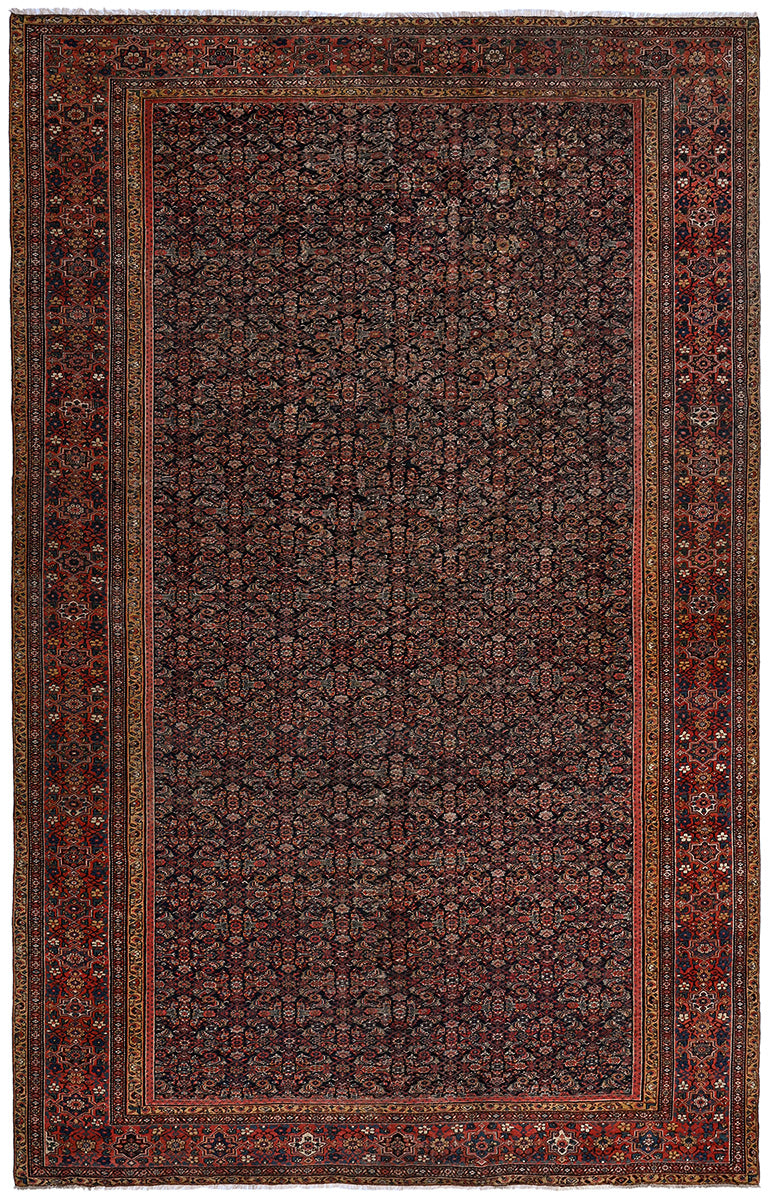 Antique Persian Farahan 535x355cm
