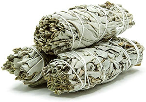 White Sage Smudge Stick - 9""