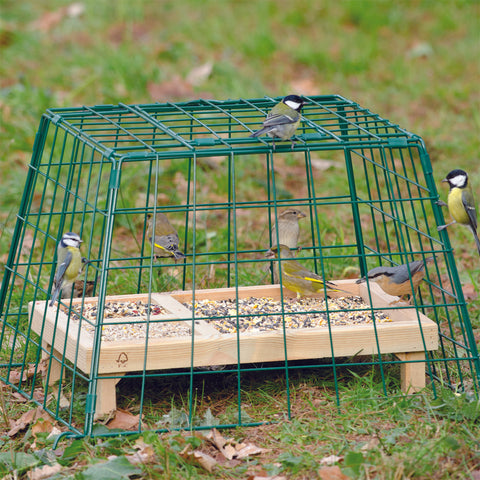 Ground Guards & Tray Feeders