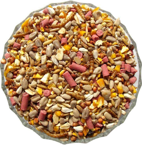 Premium Bird Seed Mix - Gala Wildlife