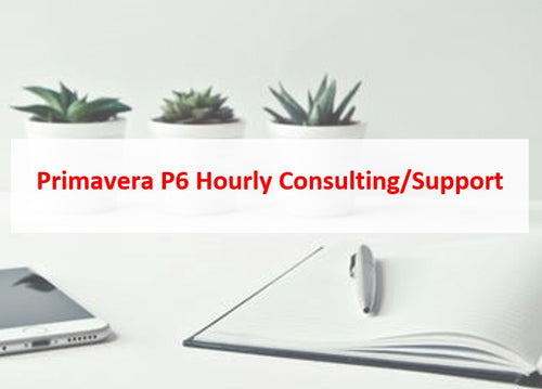 Primavera P6 Hourly Consulting/Support (5% Discount)