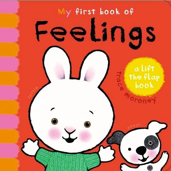 My First Book of Feelings - Lift the Flap Book
