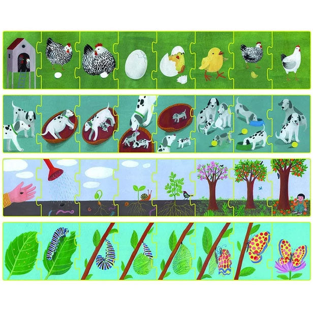 Clementoni | 4x8 Piece Sequence Puzzle - Life Cycle