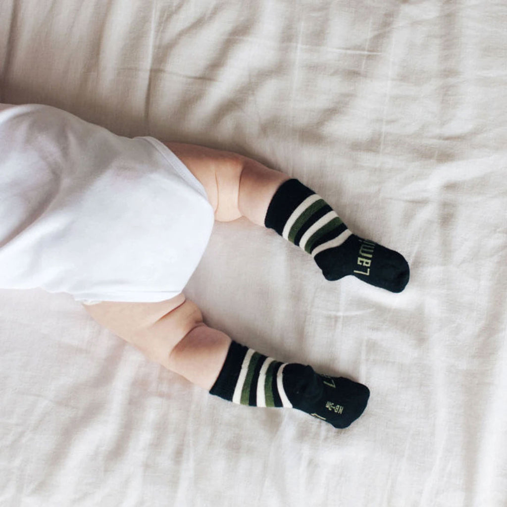 Lamington | Cadet Crew Merino Socks