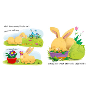 What Does Bunny Like? Touch and Feel Book