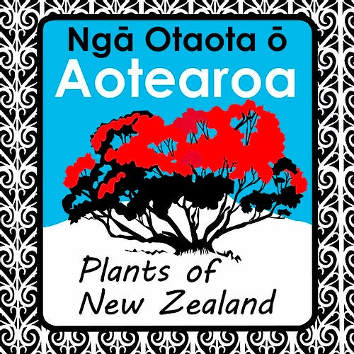 Aotearoa - Plants Of New Zealand