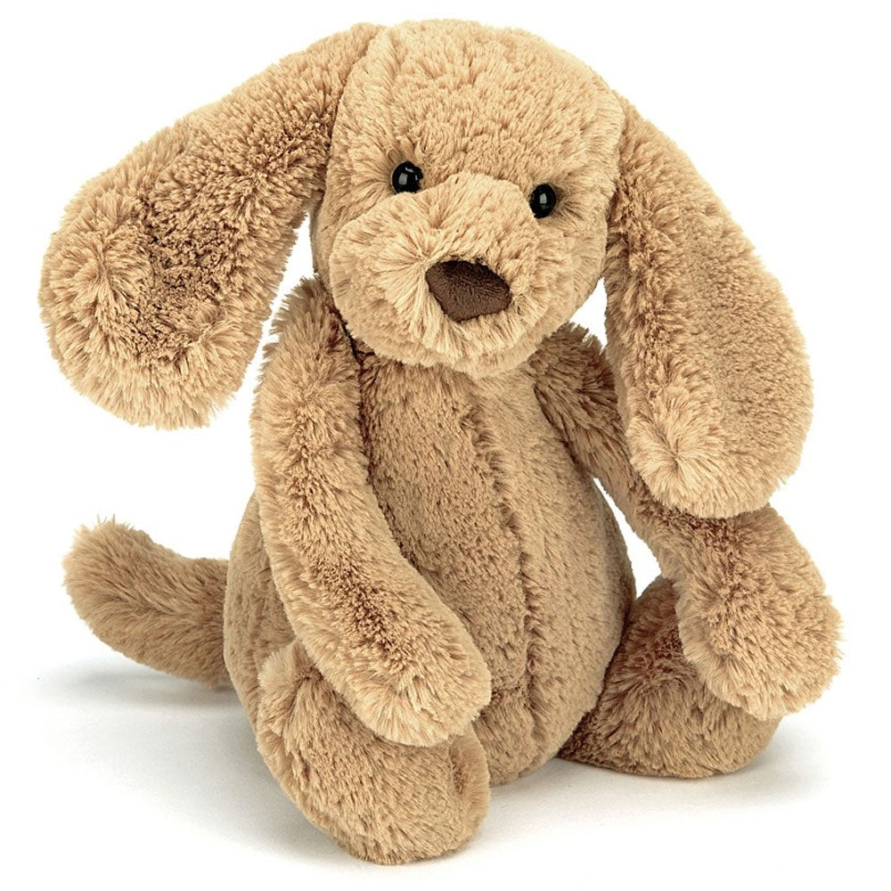 Jellycat | Bashful Toffee Puppy - Medium