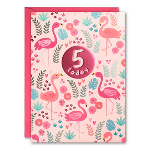 James Ellis | Birthday Cards 5 Today - Flamingos