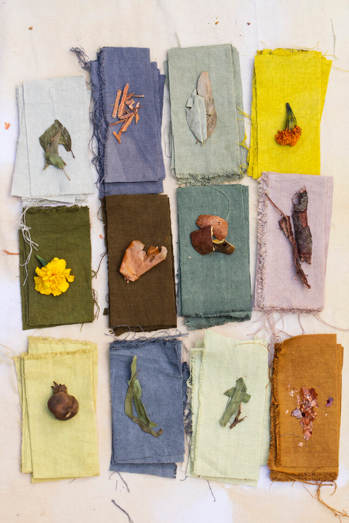 Plant based dyes from Wild Pigment Project