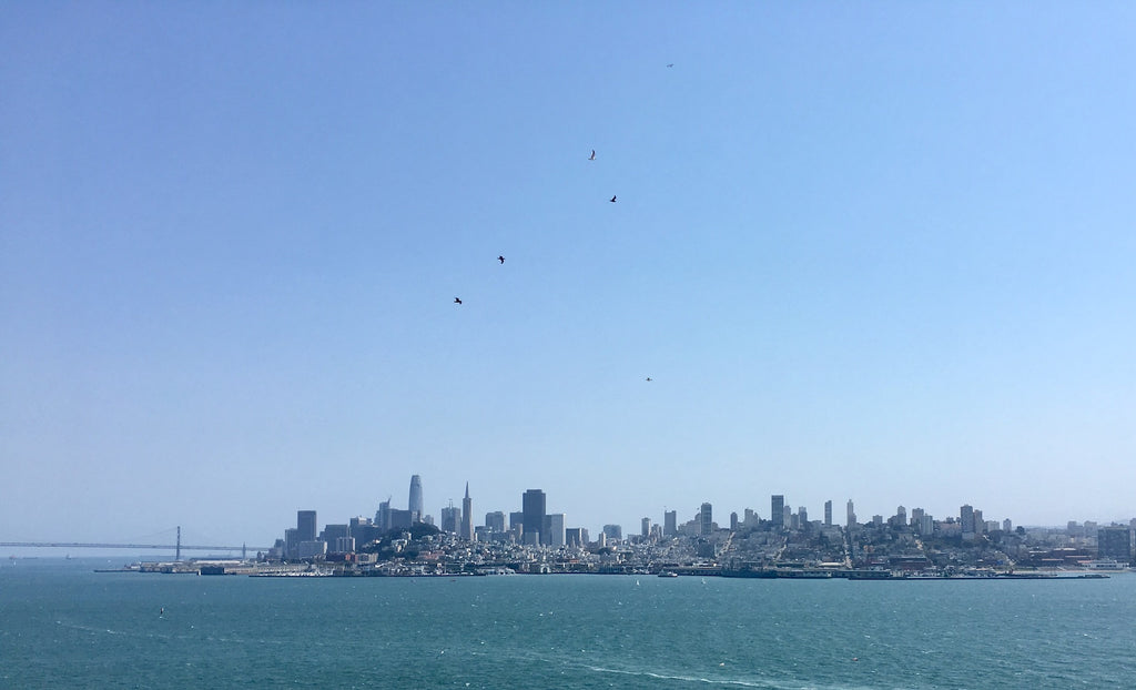The skyline view from the island of Alcatraz on a beautifully clear day.