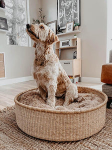 African Moses Basket - Round XXL Woven Dog Bed