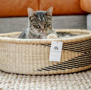 Fluffy Cat Bed - Cat-Small Dog Bed With Cushion