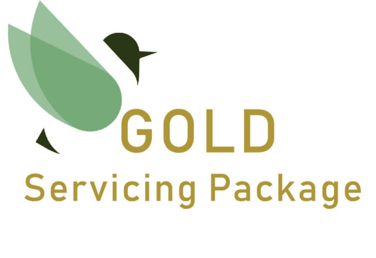 Freed Gold Servicing Package - Electric Scooter