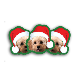 Santa Hat Stickers