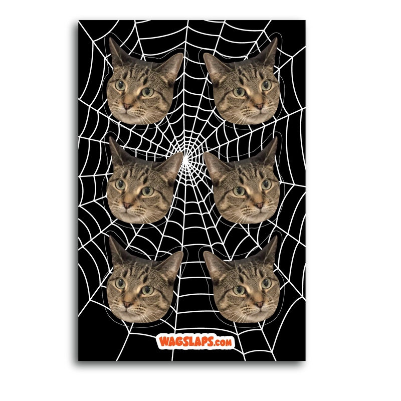 Spider Web Stickers