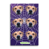 Custom Spider Web Stickers