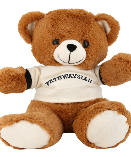 Pathways Teddy