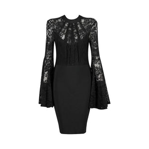 Black Pleated  Flare Sleeve Jewel-Neck  Lace Dress