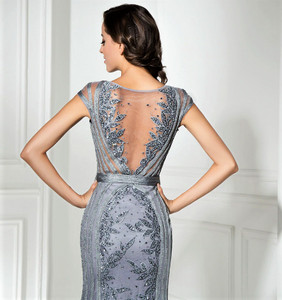 Luxury Illusion Cap Sleeve Scoop Back Lace Gown.