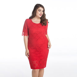 Women Dress Lace Sexy Europe and America Style Best Shape Wears, Hair Removers, Leggings & Intimate