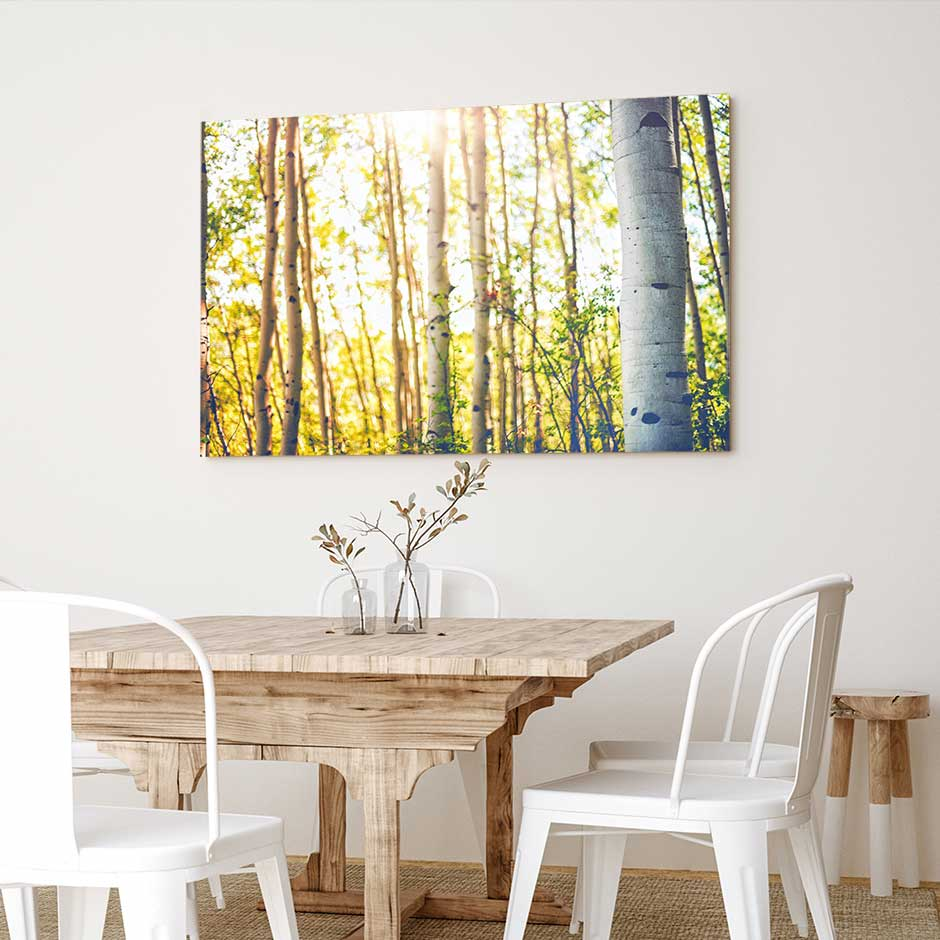 Aspens in Summer - Canvas Print by Emily Kent | Art Bloom Canvas Art