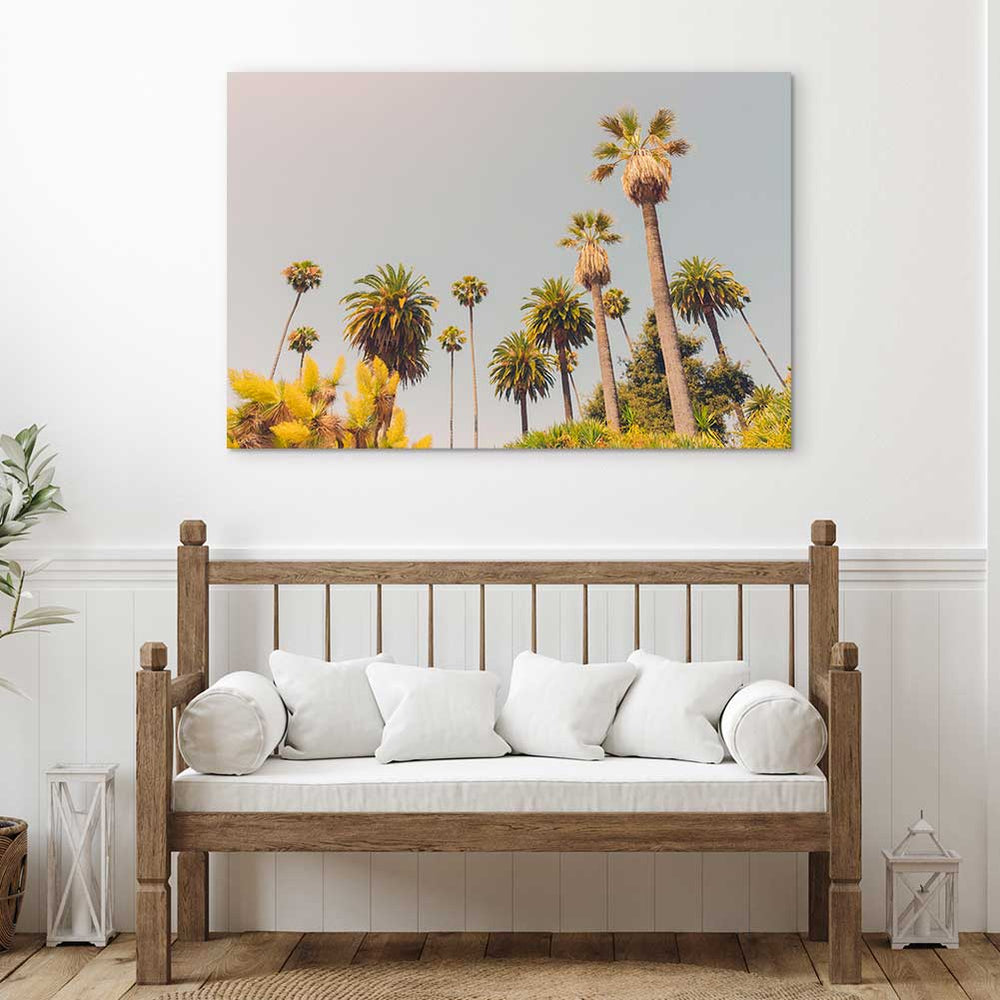California Palm - Canvas Print by Dan Hobday | Art Bloom Canvas Art