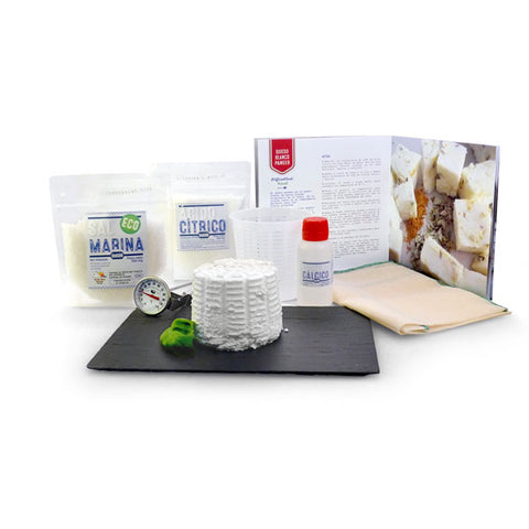 Make your Own Cheese Kit