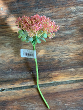32. Pink floral stem - Baycreek & Co