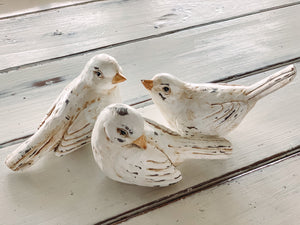 Birds | 3 styles included - Baycreek & Co